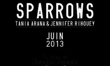 Visuel du projet SPARROWS
