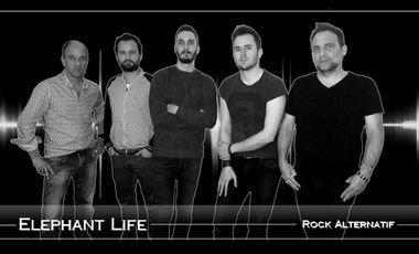 Project visual ELEPHANT LIFE enregistrement d'un premier EP 4 titres numérique
