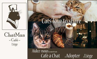 Project visual Café à chats en Liège :  Le ChatMan Café