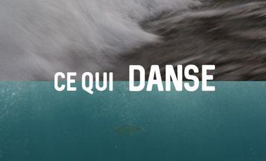 Visuel du projet Ce Qui Danse - court-métrage