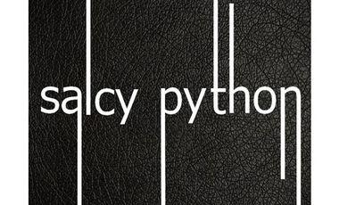 Visueel van project Salcy Python sort son prochain EP (4 titres)