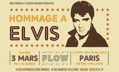 Project visual Concert Jake Calypso à Paris