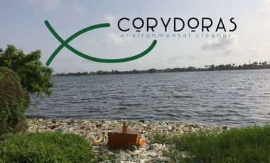 Project visual Corydoras - Environment Cleaner, we start with plastic.
