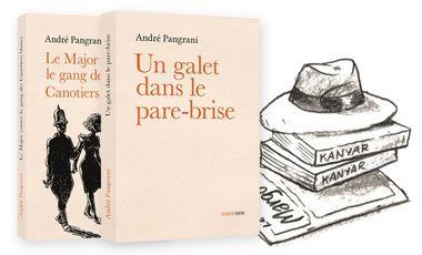 Visuel du projet Un galet dans le pare-brise d'André Pangrani