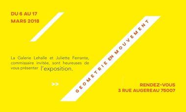 Visueel van project Exposition : Géométrie en mouvement