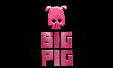 Project visual Big Pig