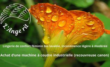 Visuel du projet L'Ange Rit - Lingerie de confort féminin, bio et lavable