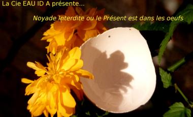 Project visual Noyade Interdite (ou le Présent est dans les oeufs)