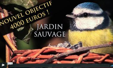 Project visual Jardin Sauvage: un safari local pour un documentaire original!
