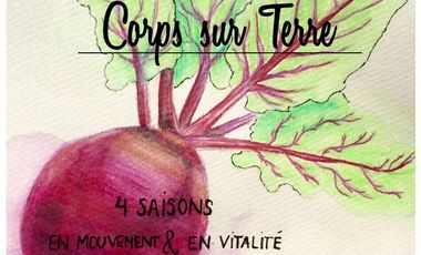 Project visual Association Corps sur Terre