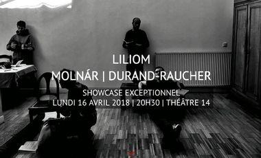 Visueel van project Liliom