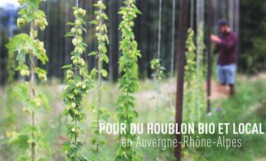 Visuel du projet Une Petite Mousse - la Houblonnière