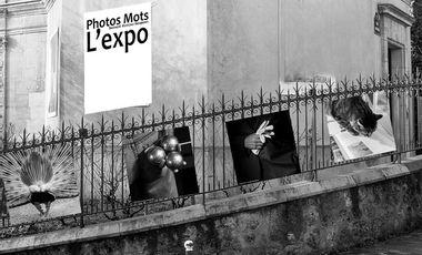 Visueel van project Soutenez l'exposition PhotosMots à Montmartre