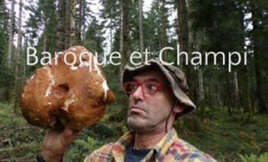 Visueel van project Le Monde des Champignons