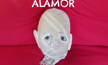 Visueel van project Alamor
