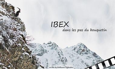 Visueel van project IBEX, dans les pas du bouquetin