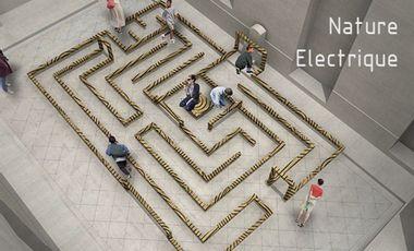 Visuel du projet Nature Electrique