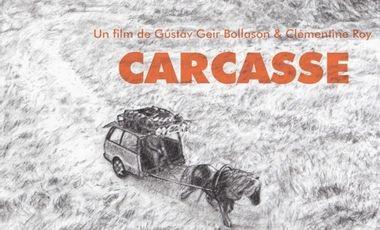Visuel du projet CARCASSE