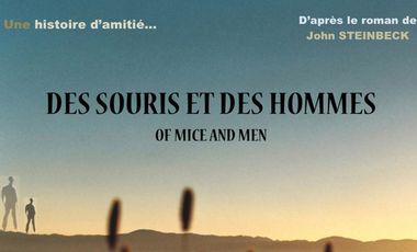 Visuel du projet DES SOURIS ET DES HOMMES