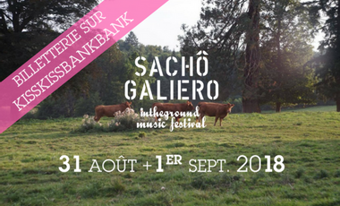 Project visual Festival SACHÔ GALIERO#5