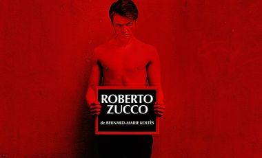 Project visual Financement Roberto Zucco pour Avignon