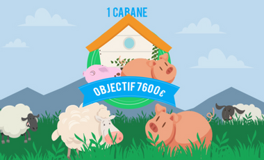 Visueel van project Un troupeau pour repartir à zéro !