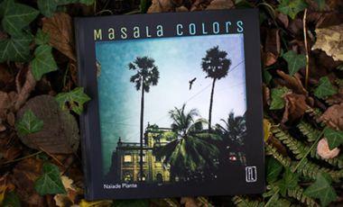 Project visual MASALA COLORS