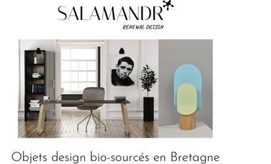 Project visual Salamandr: French Ecodesign Editor