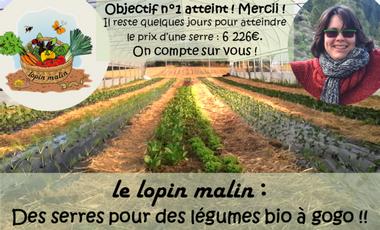 Visueel van project Plus de serres pour des légumes bio à Gogo !!