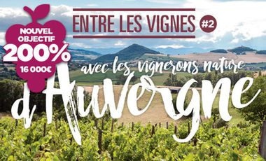Visueel van project ELV#2 avec les Vignerons Nature d'Auvergne