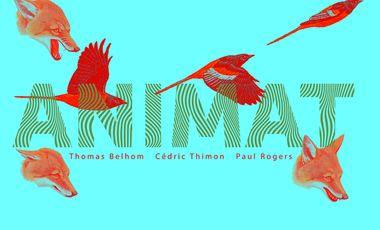 Visueel van project ANIMAT : premier album de Thomas, Paul & Cédric