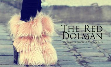 Visueel van project The Red Dolman