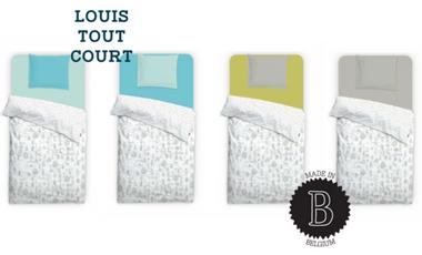 Visueel van project Louis Tout Court