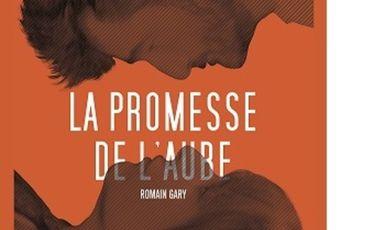 Project visual La Promesse de l'Aube - spectacle