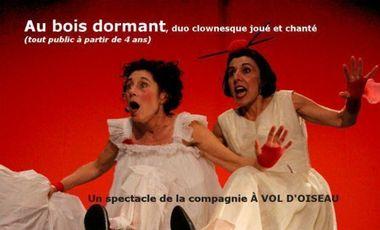 Project visual Au bois dormant