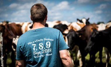 Visueel van project En direct de la Fête de la vache Nantaise !