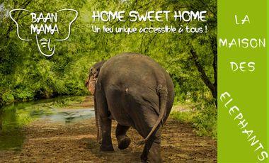 Visueel van project Baan Mama - Éléphants : Home Sweet Home !