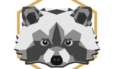 Visuel du projet Rakoone : votre site internet de qualité pour petit budget!
