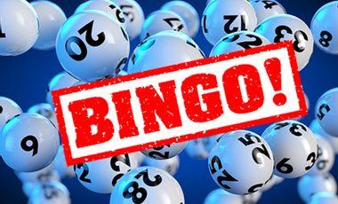 Visueel van project Bingo!