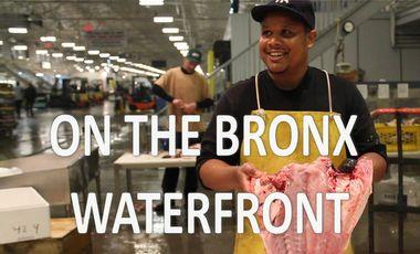 Visuel du projet Film The Bronx - New Fulton Fish Market