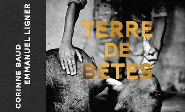Project visual Terre de Bêtes