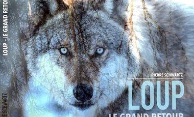Visueel van project Loup : le grand retour