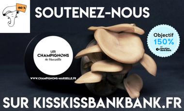 Visuel du projet Les Champignons de Marseille