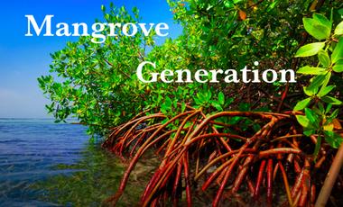 Visueel van project Mangrove Generation - Indonésie, Sumatra