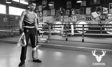 Visueel van project Ceros : une marque de boxe en ébullition