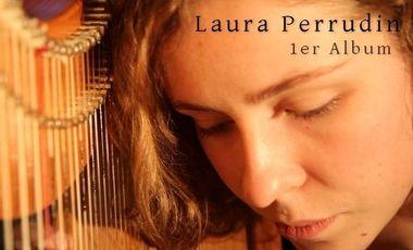 Project visual Premier album de la harpiste et chanteuse Laura Perrudin
