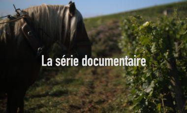 Visueel van project Juste devant nous - la série documentaire