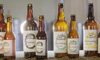 Visueel van project Microbrasserie Caribrew : Des bières créées pour vous !