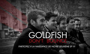 Visueel van project GOLDFISH DON'T BOUNCE - 2ème EP