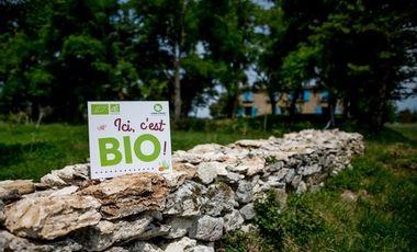 Visuel du projet Les Saveurs du Bois du Roc